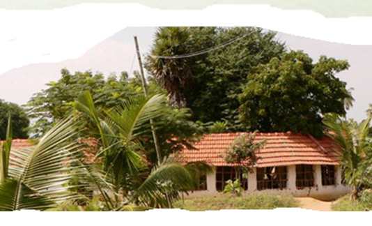 Workshop on Natural Building and Permaculture – 9th Jan 2014 to 15th Feb 2014
