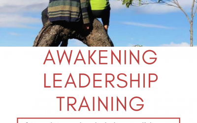 Awakening Leadership Training programme 2019-2020
